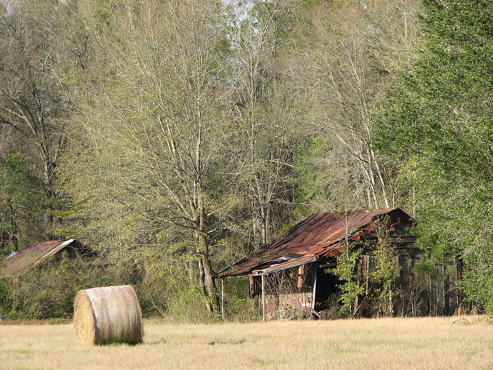 Old farm shanti by Beowulf