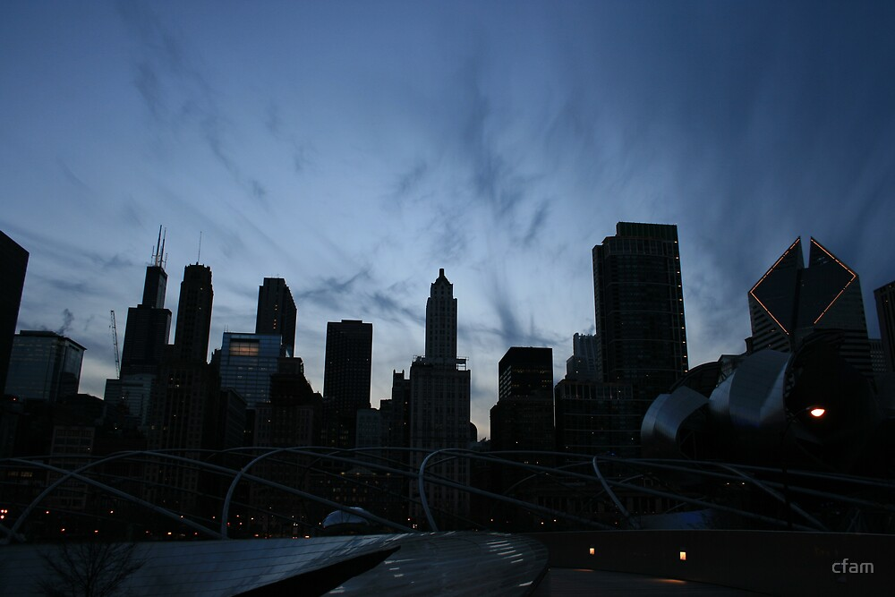 Downtown Chicago, Evening Skyline by cfam