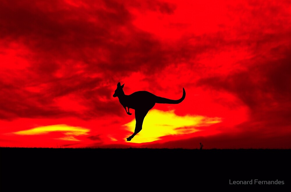 Kangaroo at Sunset with a red sky - Warrandyte State Park, Victoria by Leonard Fernandes
