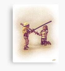 Sword Play Canvas Print