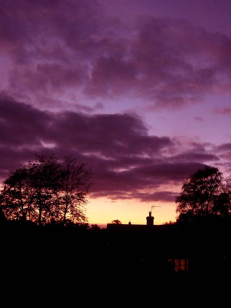 Sunset by rebecca3