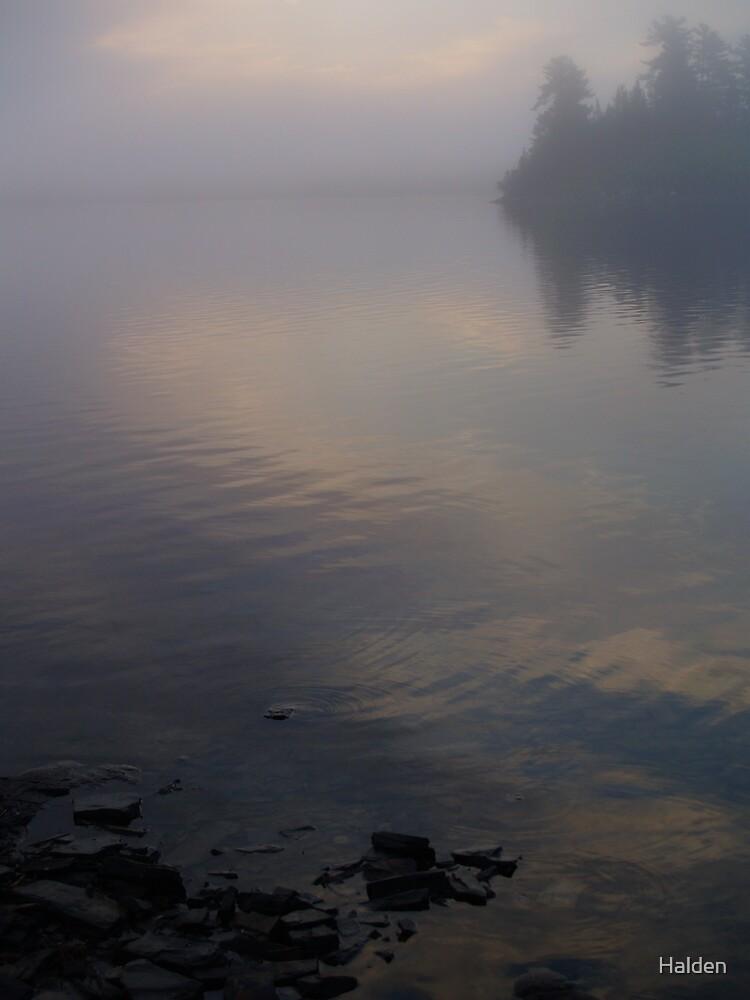 Pastel Lake by Halden