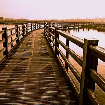 Boardwalk In Sepia by IanFoss