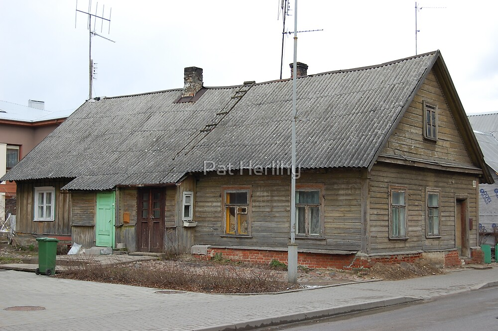 House in Lithuania, 2008 by Pat Herlihy