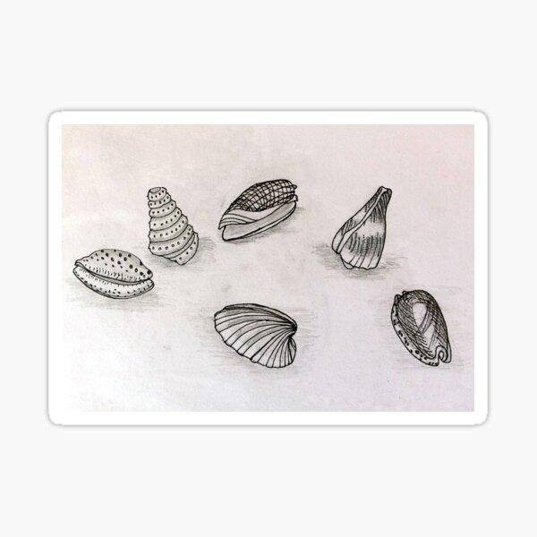 Seashells - Art from the Sea Sticker