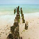 Baltic Sea by Dominika Aniola