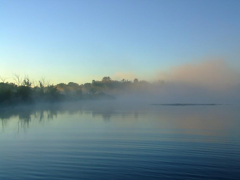 hidden in the mist by Elizabeth Thurston