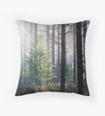 10.6.2017: Young Birch Throw Pillow