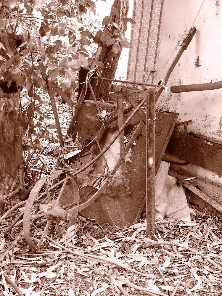 The Old Wheelbarrow by Sonic
