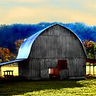 Arkansas Charmer by Lisa Putman