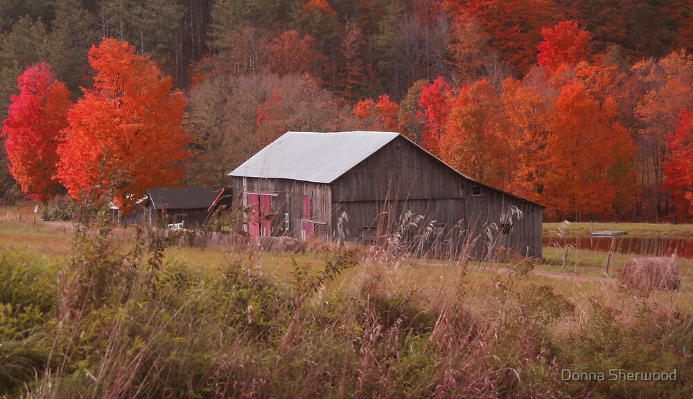 Barn on the Hill by Donna Sherwood