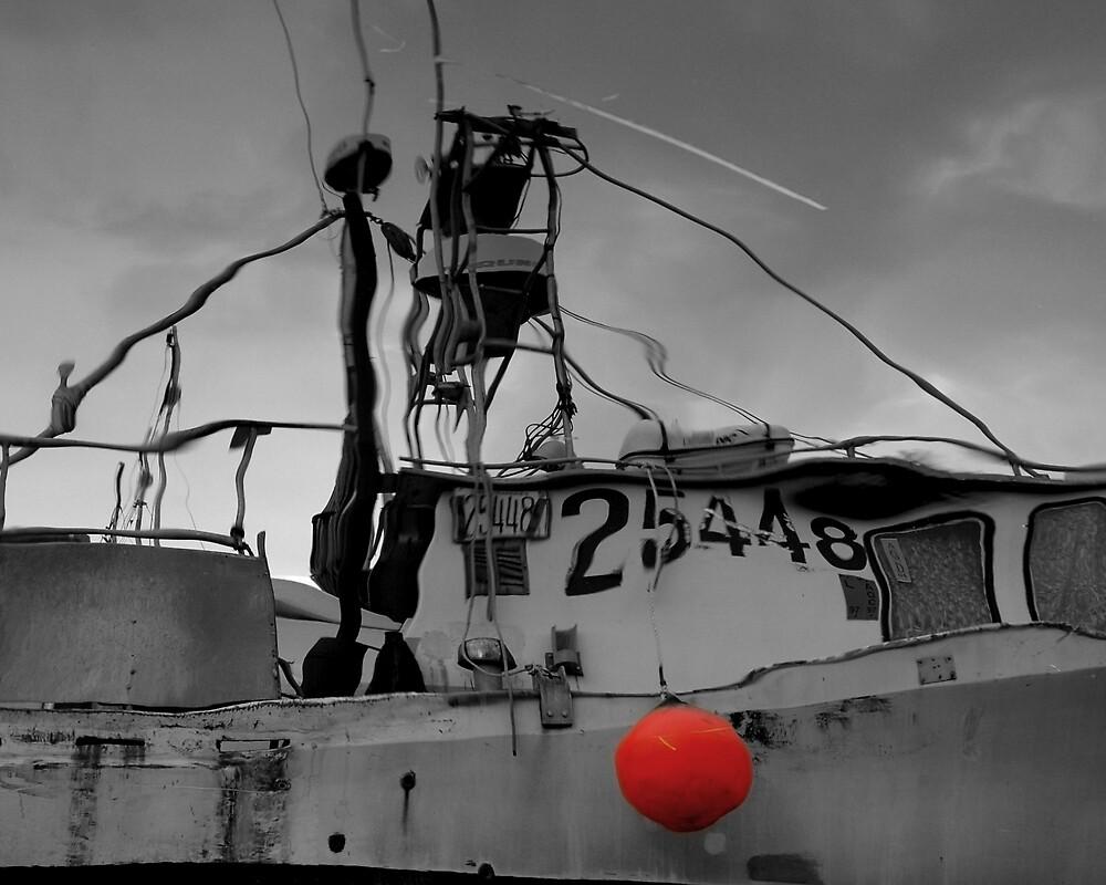 Marine Reflection by tashunka