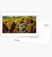 Highland Gathering Postcards