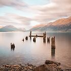 New Zealand Jetty by Margaret Metcalfe