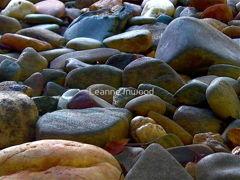 garden rocks by Leanne Inwood