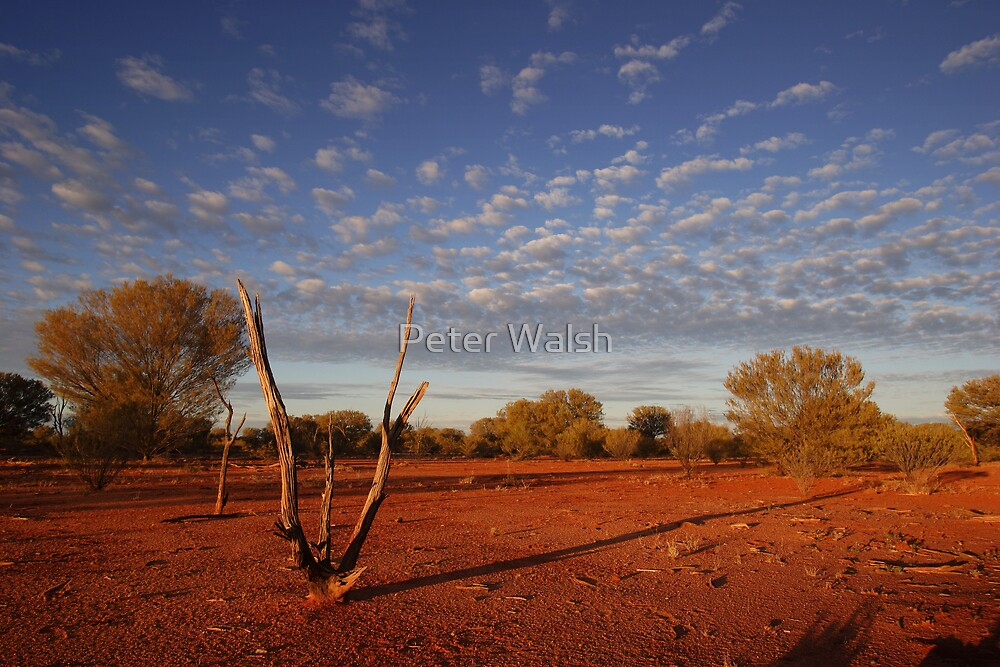 Central Australia by Peter Walsh