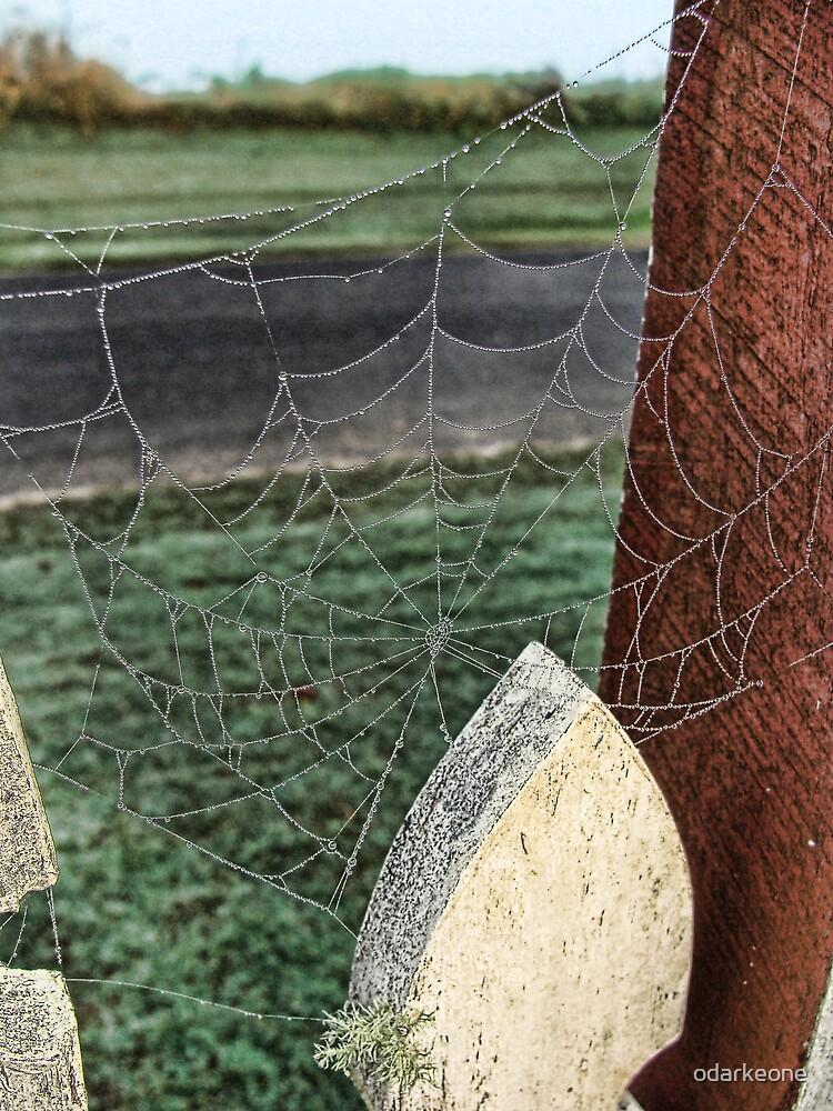 Web at the Gate 2 by odarkeone