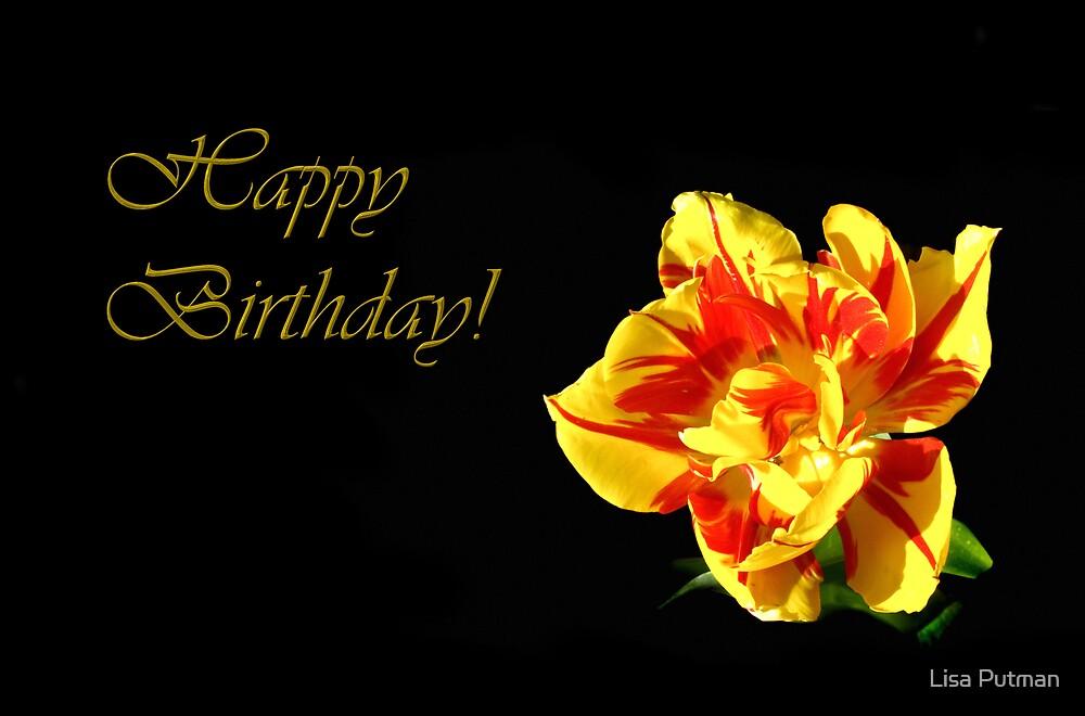Red & Yellow Tulip ~ Happy Birthday by Lisa Putman