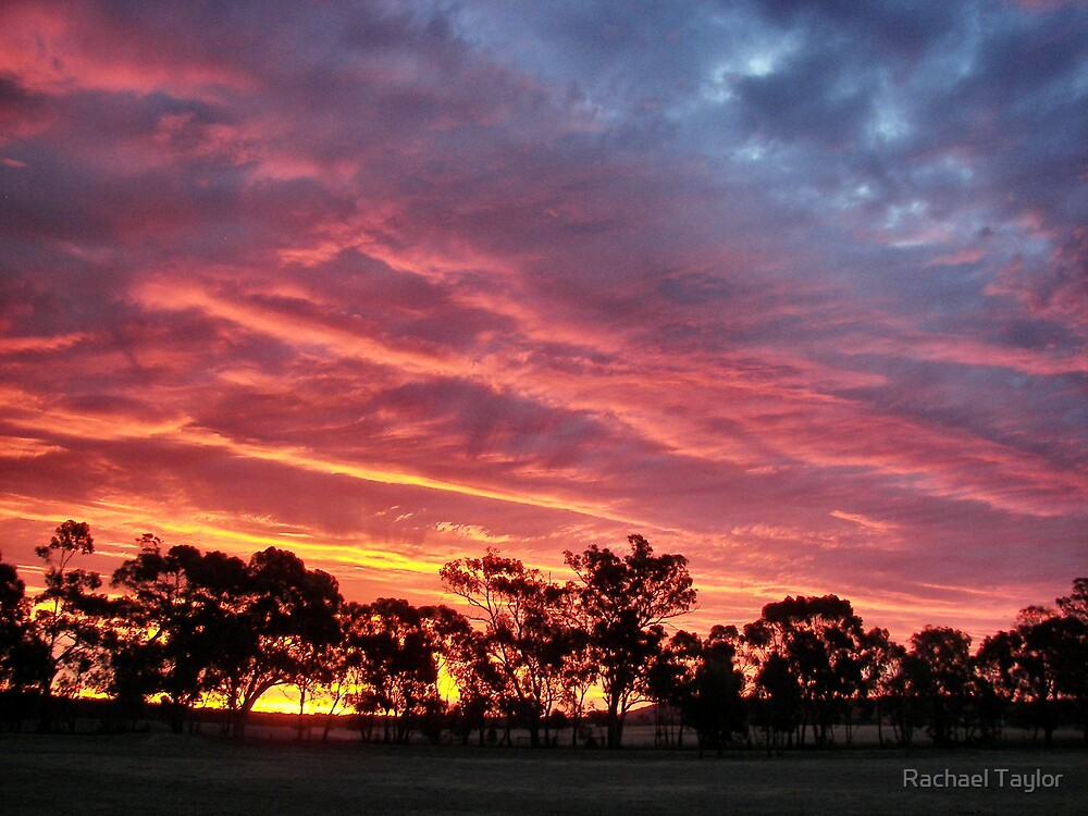 Burning Sunset - Inglewood Victoria by Rachael Taylor