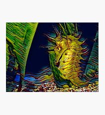 A seahorse called Vincent Photographic Print