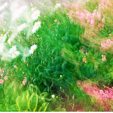 fairy garden by Lilaviolet