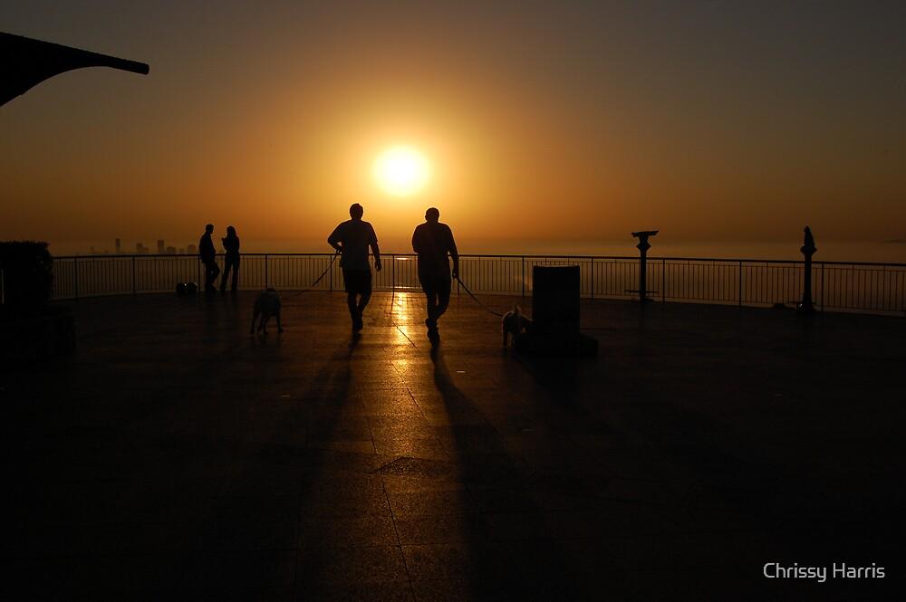 Walking at Sunrise by Chrissy Harris