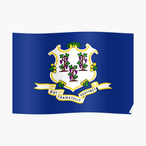 Flag of Connecticut Poster