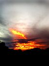 fire in the sky by Anthony Mancuso