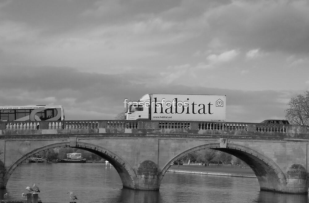 Our Habitat by frasersfotos