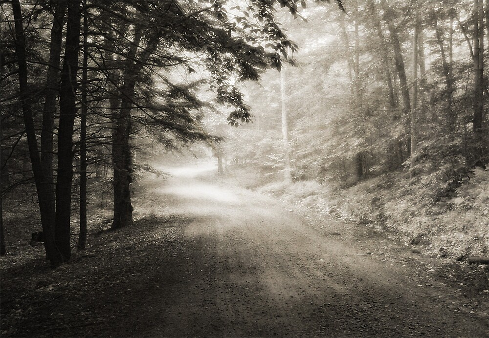 Country Road by Judy Olson