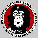 Start a revolution b by TiagoChagas