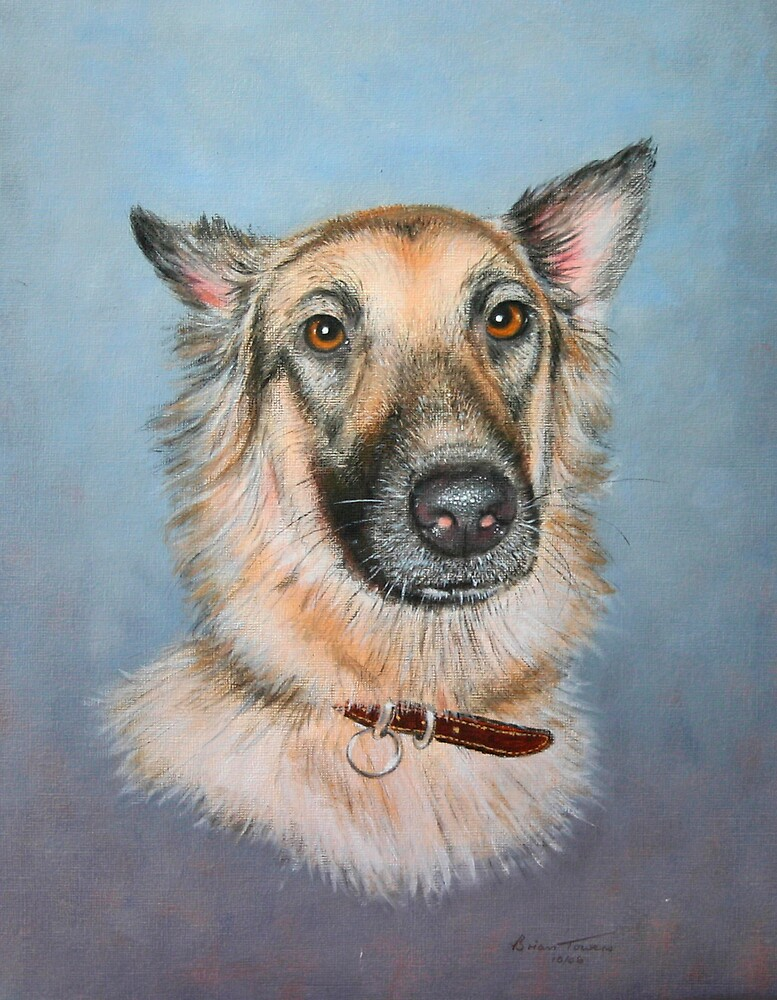 Bonnie dog by Brian Towers