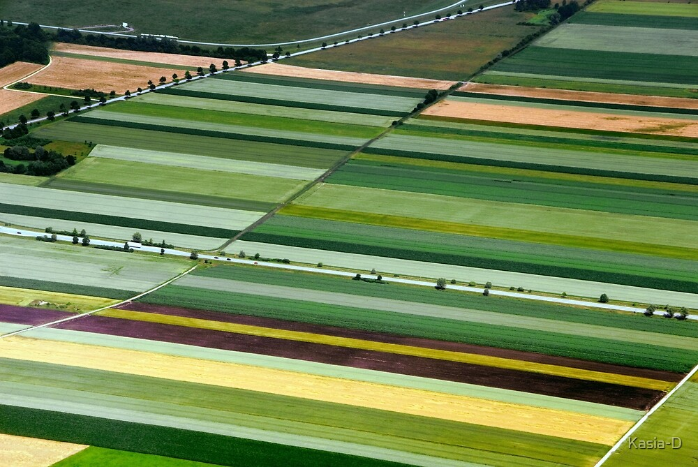 Field Art in Bavaria by Kasia-D