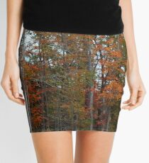Colorful Cuyahoga Mini Skirt