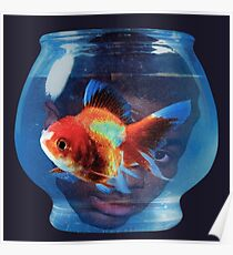 Big fish theory vince staples Poster
