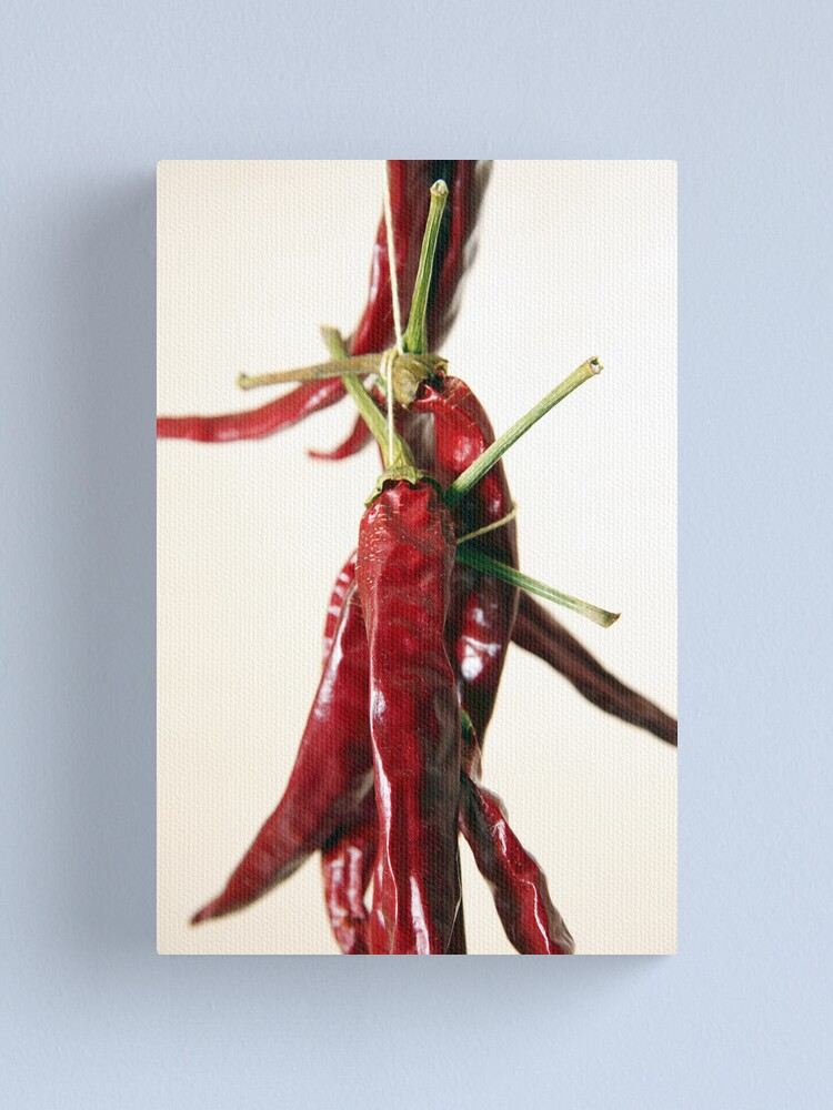 Alternate view of Red Hot Canvas Print