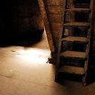 Whiskey warehouse by ragman