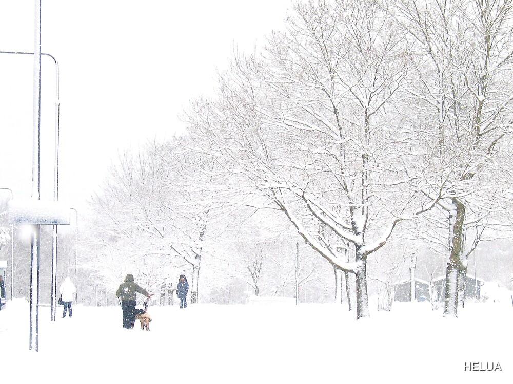 Winter in the City by HELUA