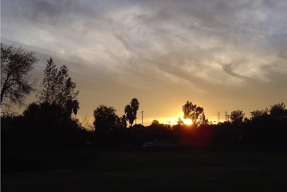Northern California Sunset III by Jerry Stewart