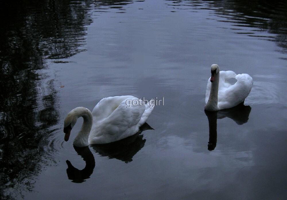 Swan Lake by gothgirl