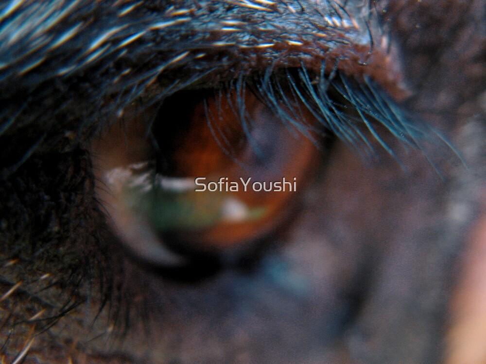 ANIMAL EYELASH by SofiaYoushi