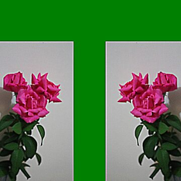 Trio of Roses by KazM