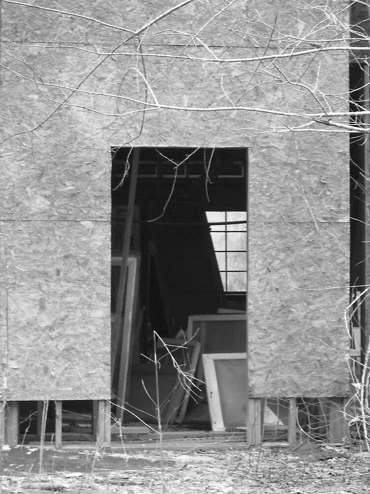 Door with Windows by Rebecca Ogden