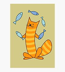 Cat juggling fish Photographic Print