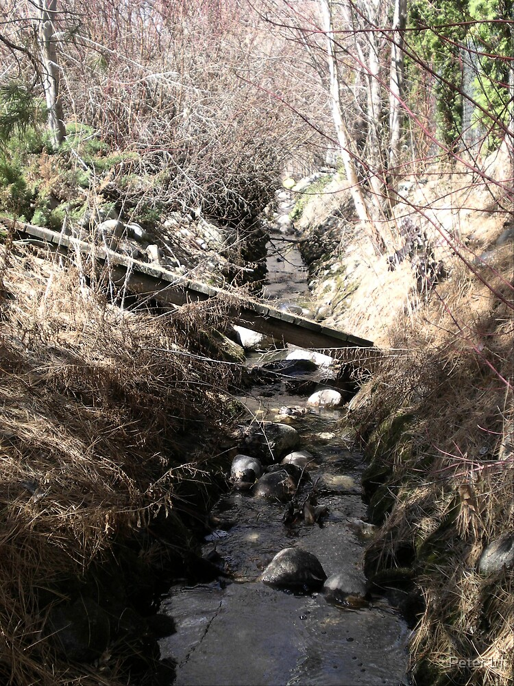 Broken Bridge by Peter L
