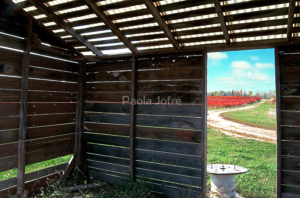 country view by Paola Jofre