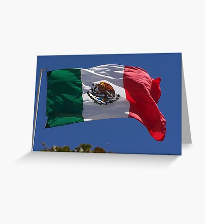 Viva Mexico Greeting Card
