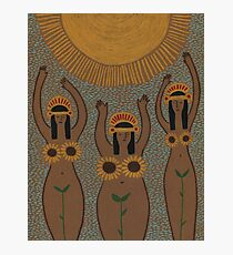 Sunflowers- The Inca Maidens of the Sun  Photographic Print