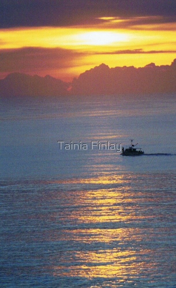 First Light by Tainia Finlay