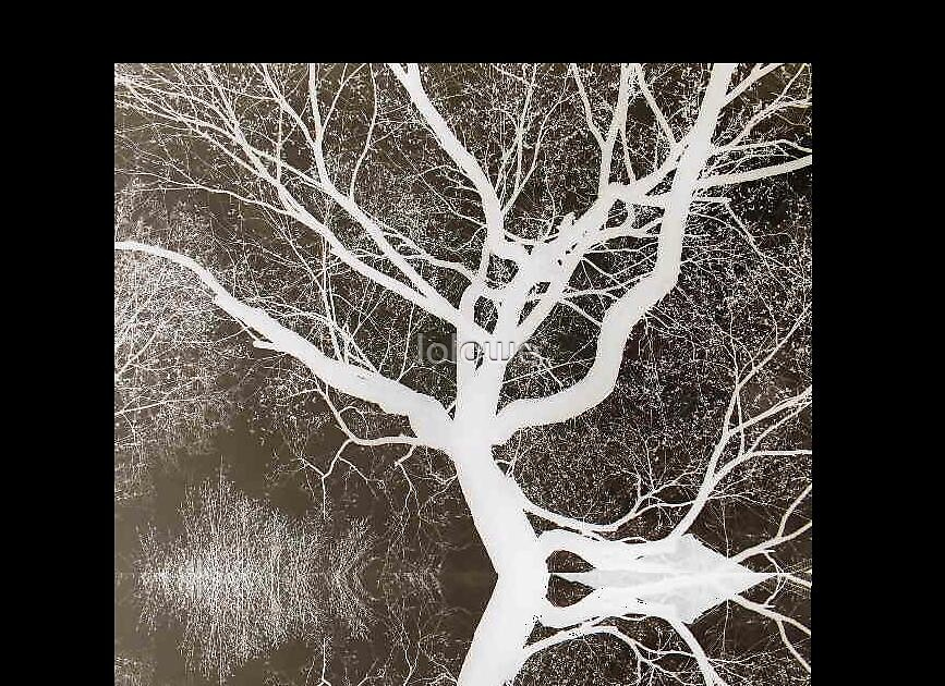Inverted Trees by lolowe